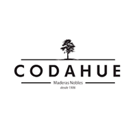 Codahue | CONSTRUEX